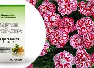 Инфетон- тройчатка растительные таблетки противоглистные как профилактика паразитарных и глистных инвазий