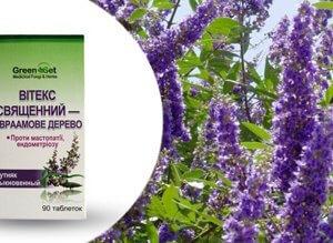 Витекс священный-Авраамово дерево (прутняк), как природную альтернативу гормонотерапии, регуляция женской репродуктивной системы, мастопатии и ПМС