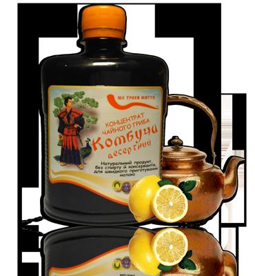 чайный гриб напиток комбучча - эликсир молодости как общеукрепляющий продукт, восстанавливающий силы и природный антибиотик