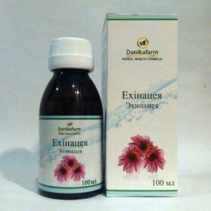 Эхинацея как общеукрепляющее средство для профилактики простудных заболеваний на фоне сниженного иммунитета