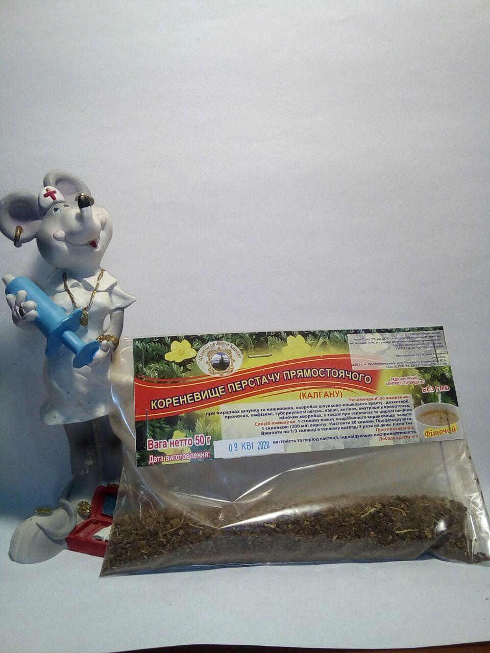 окупаете корневище калгана - лапчатка (перстач) прямостоячая в фитотерапии язвы желудка, поноса, жкт и поддержки мужского здоровья
